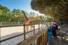 zoo sables olonne